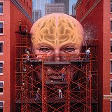Arquiteto_do_cerebro