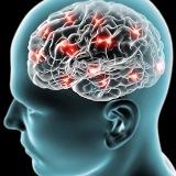 Como transferir os benefícios do treinamento cognitivo para as atividades cotidianas