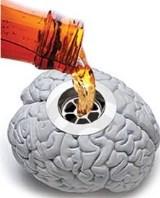 Como a bebida afeta o cérebro